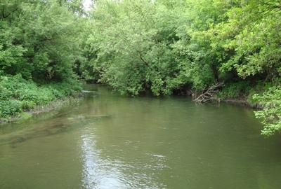 Ловля щуки на малой реке
