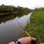 Как ловить жереха летом