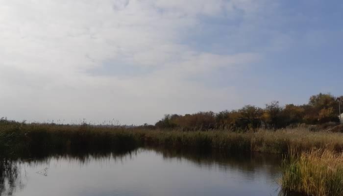 Ловля карпа осенью - читайте на Сatcher.fish